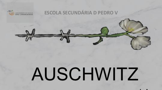Exposição – Auschwitz nunca mais